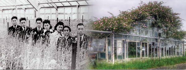 Image of Oishi Family and Photograph by Ken Osborn